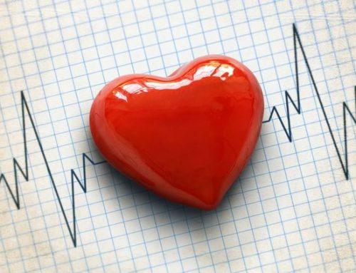 La dysplasie ventriculaire droite arythmogène